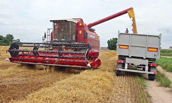 Аграрии Чечни приступили к уборке зерновых