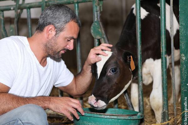 На Ставрополье 12 семейных животноводческих ферм получили гранты на 47,6 млн рублей